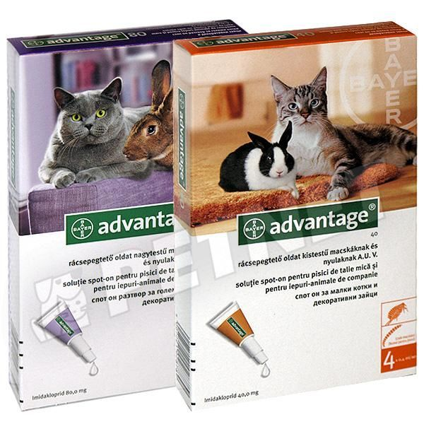 Advantage 40 Rabbit SpotOn 4x0,4ml
