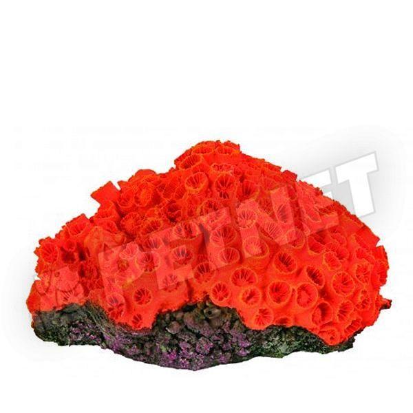 Trixie Kis Korall 02 13x9cm