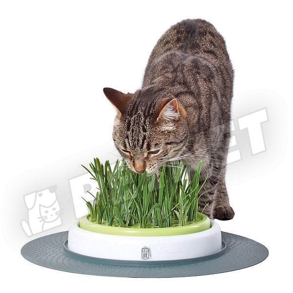Hagen CatIt Senses Grass Garden macskafűnevelő