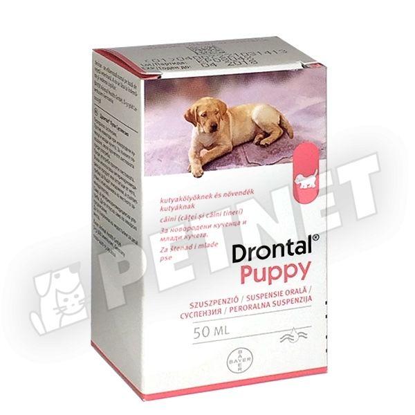 kutya féregtelenítő tabletta