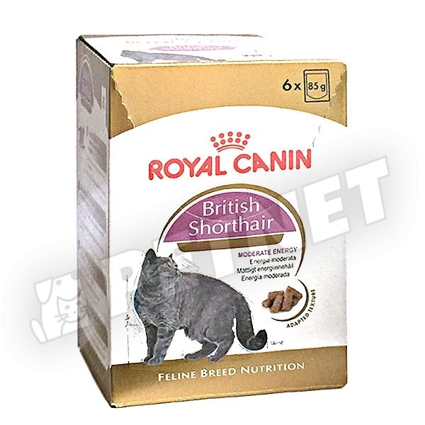 royal canin fbn british shorthair adult 6x85g fajtat p brit r vidsz r macsk knak 15 kedvezm ny. Black Bedroom Furniture Sets. Home Design Ideas
