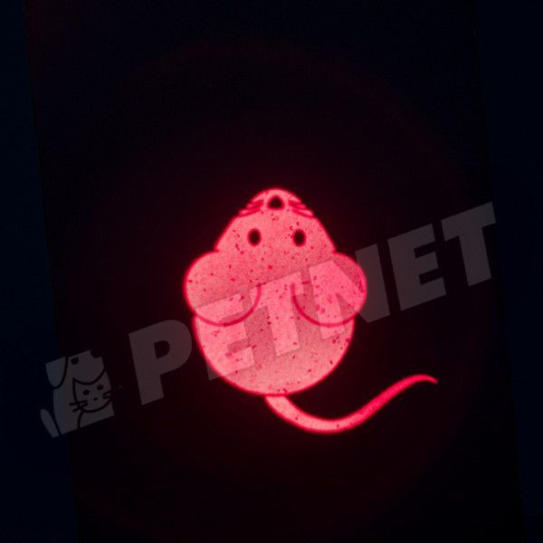 Trixie Catch the Light LED Mouse USB töltesű macskajáték