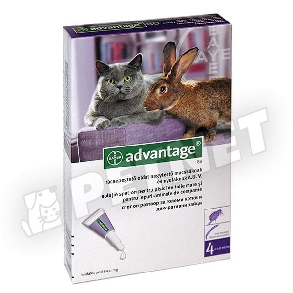 Advantage 80 Cat SpotOn 4x0,8ml