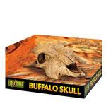 ExoTerra Buffalo Skull bölénykoponya 24cm