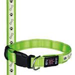 Trixie SaferLife USB világító nyakörv zöld M-L 40-50cm