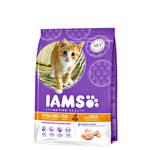 IAMS Kitten & Junior Proactive Health Chicken 2,55kg