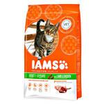 IAMS Adult ProActive Health Lamb 15kg