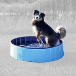Trixie Dog Pool kutyamedence Small 80x20cm