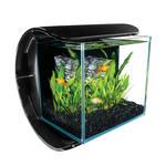Tetra Silhouette Design akvárium készlet 12L