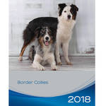 Trixie Border Collie kutyás falinaptár 2018