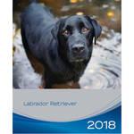 Trixie Labrador Retriever kutyás falinaptár 2018