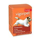 Candioli Vigorpet DMG Immunerősítő kutyáknak 20db