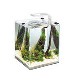 AquaEl Shrimp Set Smart LED 10 Fehér 20x20x25cm