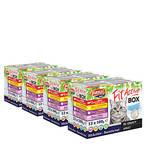 FitActive Cat Fit-A-Box húsos válogatás szószban 48x100g