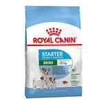Royal Canin Mini Starter Mother Babydog 8,5kg