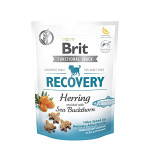 Brit Care Snack Dog Functional Recovery Herring 150g