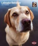 Trixie 2021 évi Labrador Retriever kutyás falinaptár