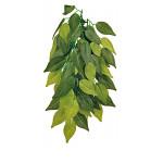 Trixie Reptiland Plant Ficus S 30cm