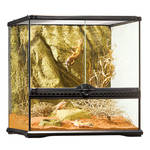 ExoTerra Glass Terrarium Small/Wide 45x45x45cm