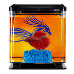 Marina Betta Kit Blue Dragon miniakvárium 2L