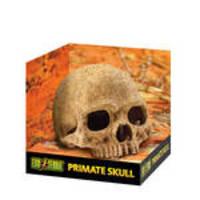 ExoTerra Primate Skull főemlőskoponya 15cm