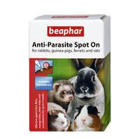 Beaphar Spot On Large Rodent nyulaknak és tengerimalacoknak 4x0,25ml