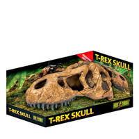 ExoTerra T-Rex Skull zsarnokgyík koponya 25cm