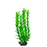 Tetra DecoArt Hygrophila Medium 25cm