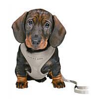 Trixie Puppy Soft Hám pórázzal Világosszürke 26-34cm 10mm/2m