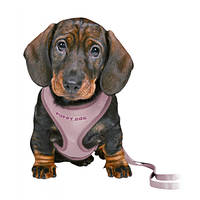 Trixie Puppy Soft Hám pórázzal Világoslila 26-34cm 10mm/2m
