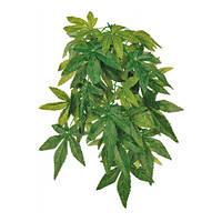 Trixie Reptiland Plant Abutilon M 50cm
