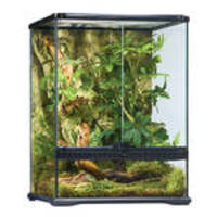 ExoTerra Glass Terrarium Small/Tall 45x45x60cm